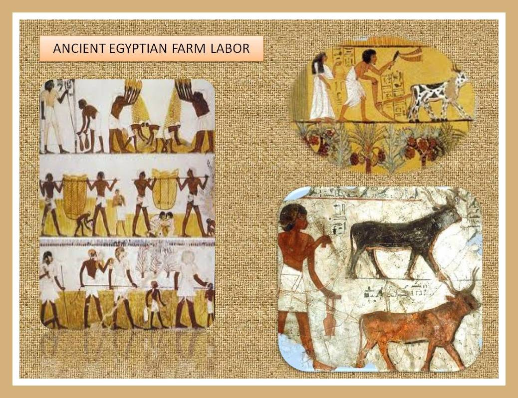 a history of art in ancient egypt Ancient egyptian art is the painting, sculpture, architecture and other arts produced by the civilization of ancient egypt in the lower nile valley from about 3000 bc to 30 ad.
